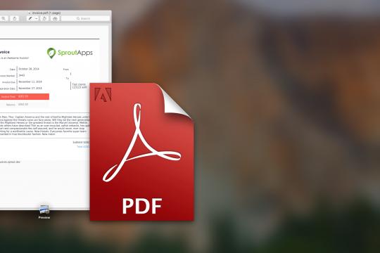 Image of PDF logo and invoice